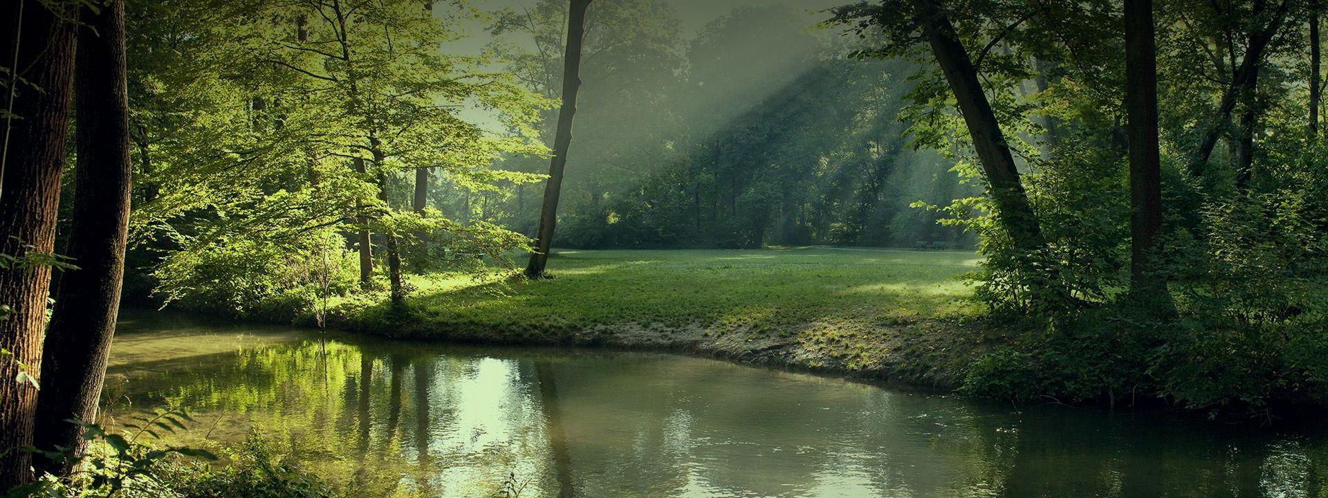 nature header image